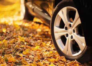 autumn-driving-hazards