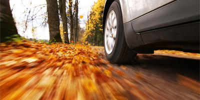 Autumn Driving Hazards