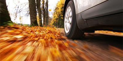 Autumn Driving Hazards