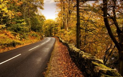 Safety Tips for Autumn Driving
