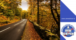 www.anewdriver.ie safe autumn driving