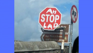 funny road signs in ireland 3