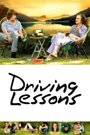 Professional Driving Schools