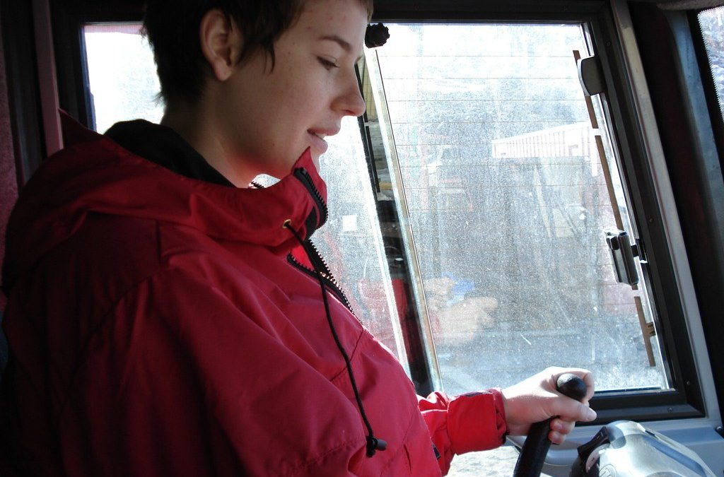 Who Can Be In The Automobile With A Permit Driver?